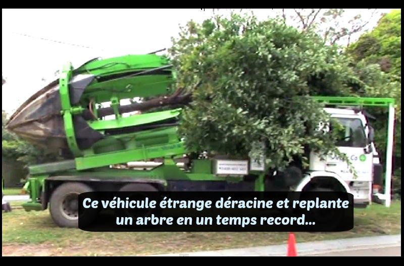 une machine tr s trange capable de d raciner et de replanter un arbre en un temps record. Black Bedroom Furniture Sets. Home Design Ideas