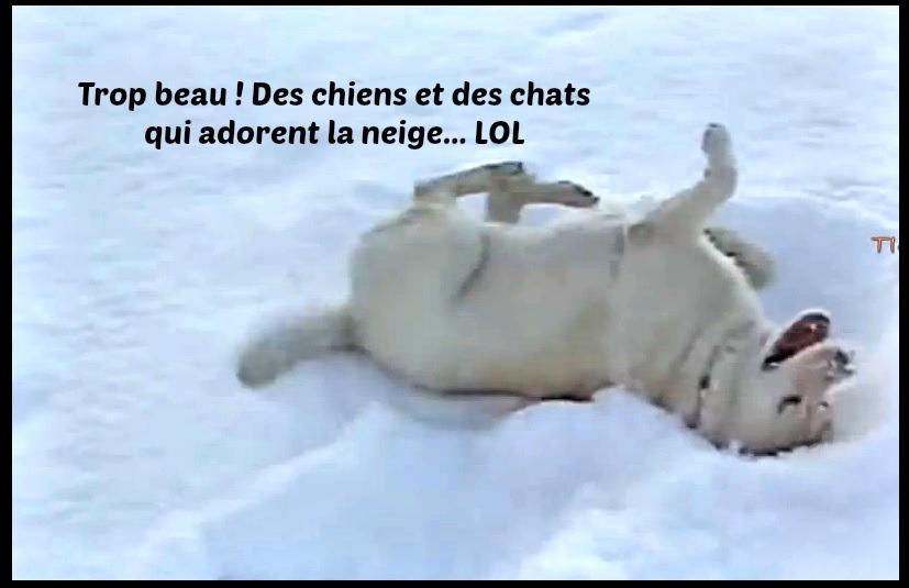 Nue dans la neige - SEXE AMATEUR: PHOTOS amateur