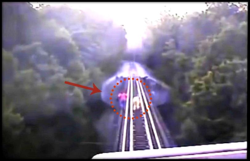 rail train femme dangereux