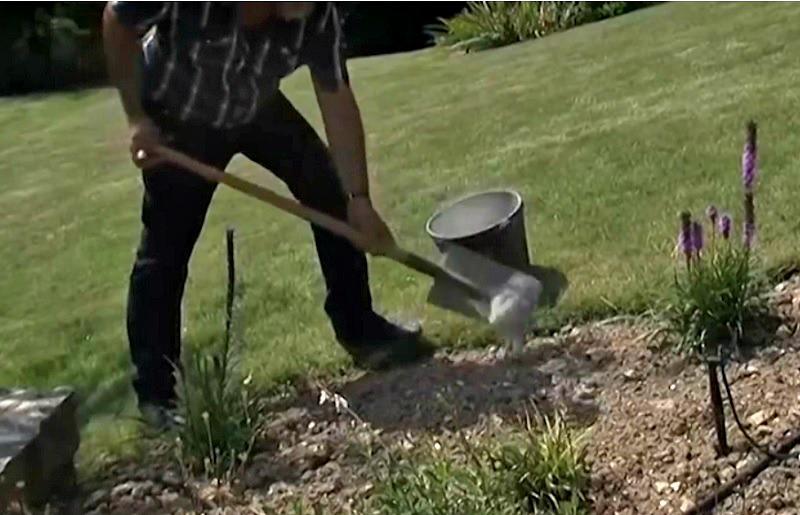 Il met des cendres dans son jardin une astuce g niale for Cendres dans le jardin
