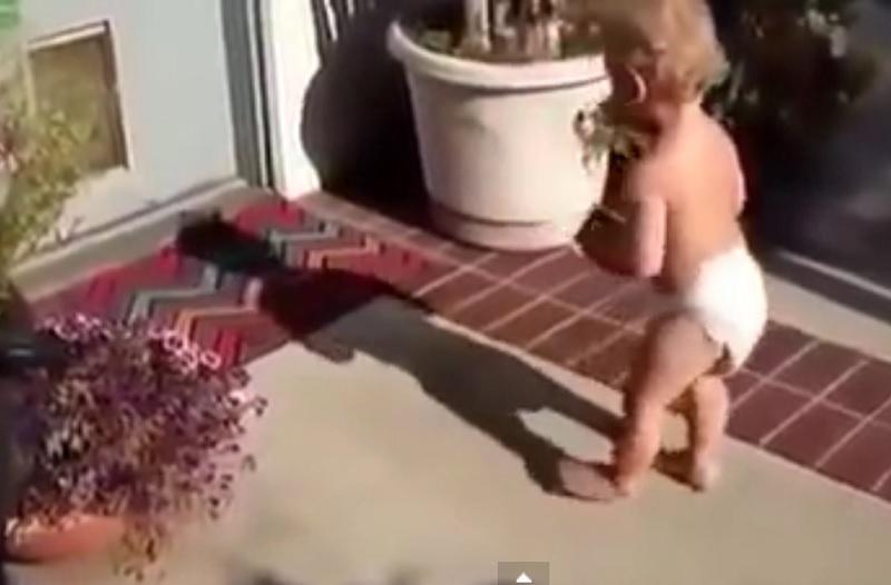 bebe ombre drole