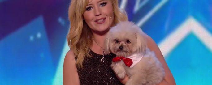 chien talentueux got talent concours