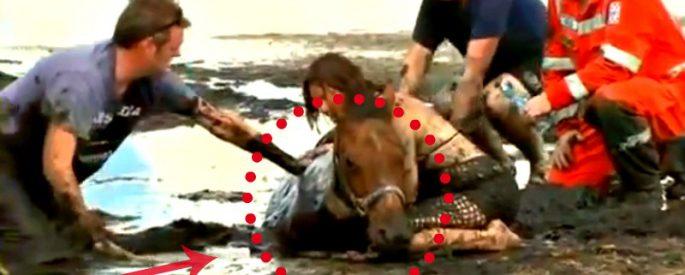 sauvetage cheval boue
