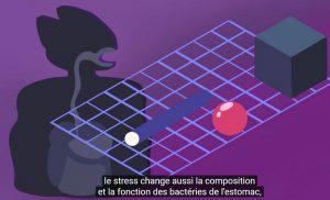 stress effet secondaire sante