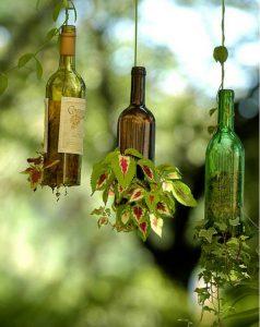 bouteille vin12