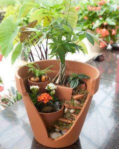 jardin miniature pot cassee plantes