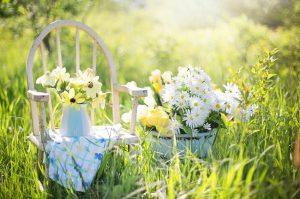 jardin bonheur