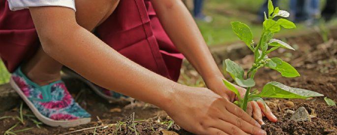 jardiner bon pour sante