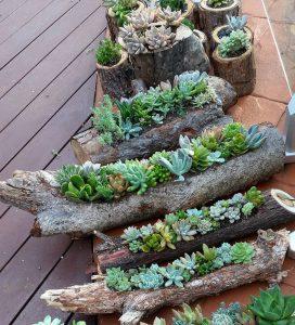 astuce jardin branche arbre fleurs