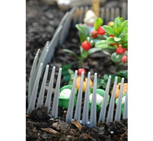 astuce jardin eloigner rongeur
