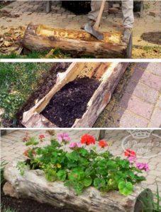 astuce jardin tronc arbre fleurs