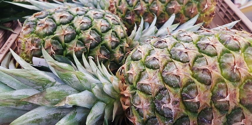 Saviez vous qu 39 on peut faire pousser un ananas partir d 39 un autre et voici comment faire - Comment faire pousser un ananas ...