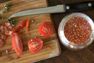 astuce faire pousser tomate