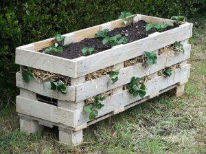 astuce jardin palette jardiniere