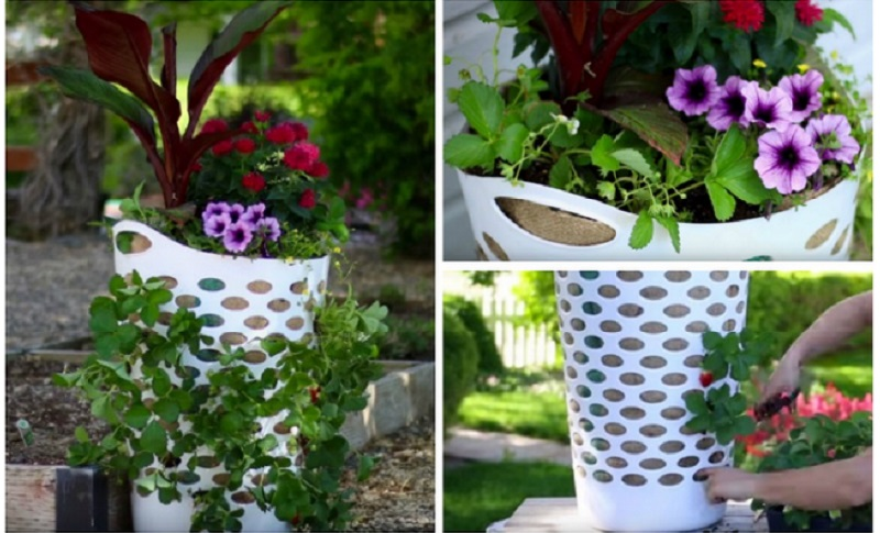 Voici Comment Faire Une Jardini Re Avec Un Panier Une