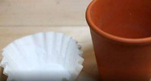 filtre cafe jardinage astuce