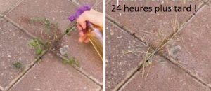 se debarrasser des mauvaises herbes rapidement