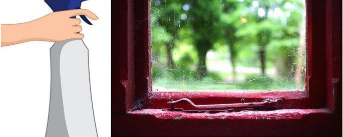 eliminer araignee maison