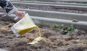 engrais naturel astuce jardin