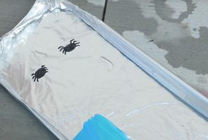 astuce bricolage enfant araignee amusant