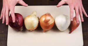 astuce oignon cuisine